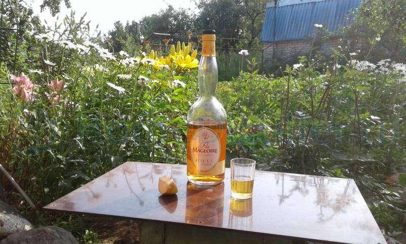 Calvados Domfrontais – делается из 70 % яблок и 30 % ароматных груш сорта Domfrontais
