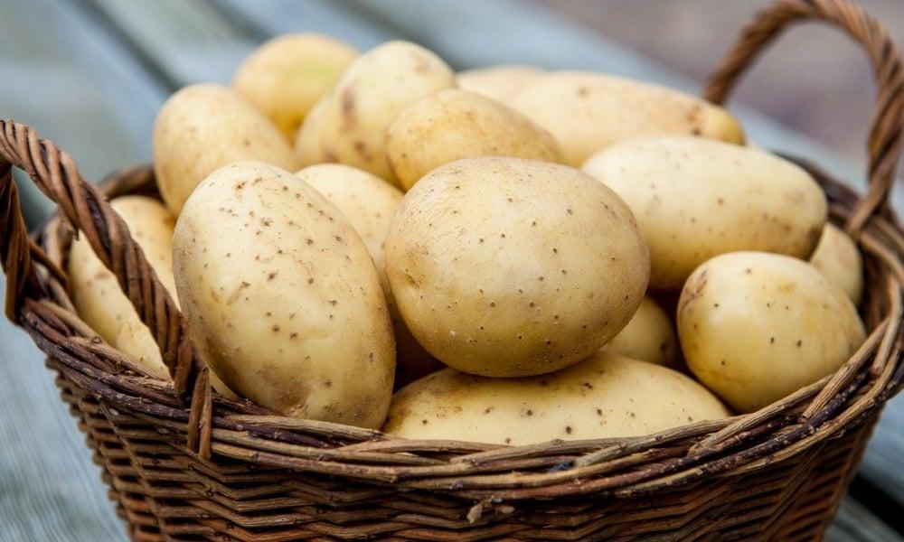 Помогает от головной боли сырой картофель, приложенный к вискам и лбу