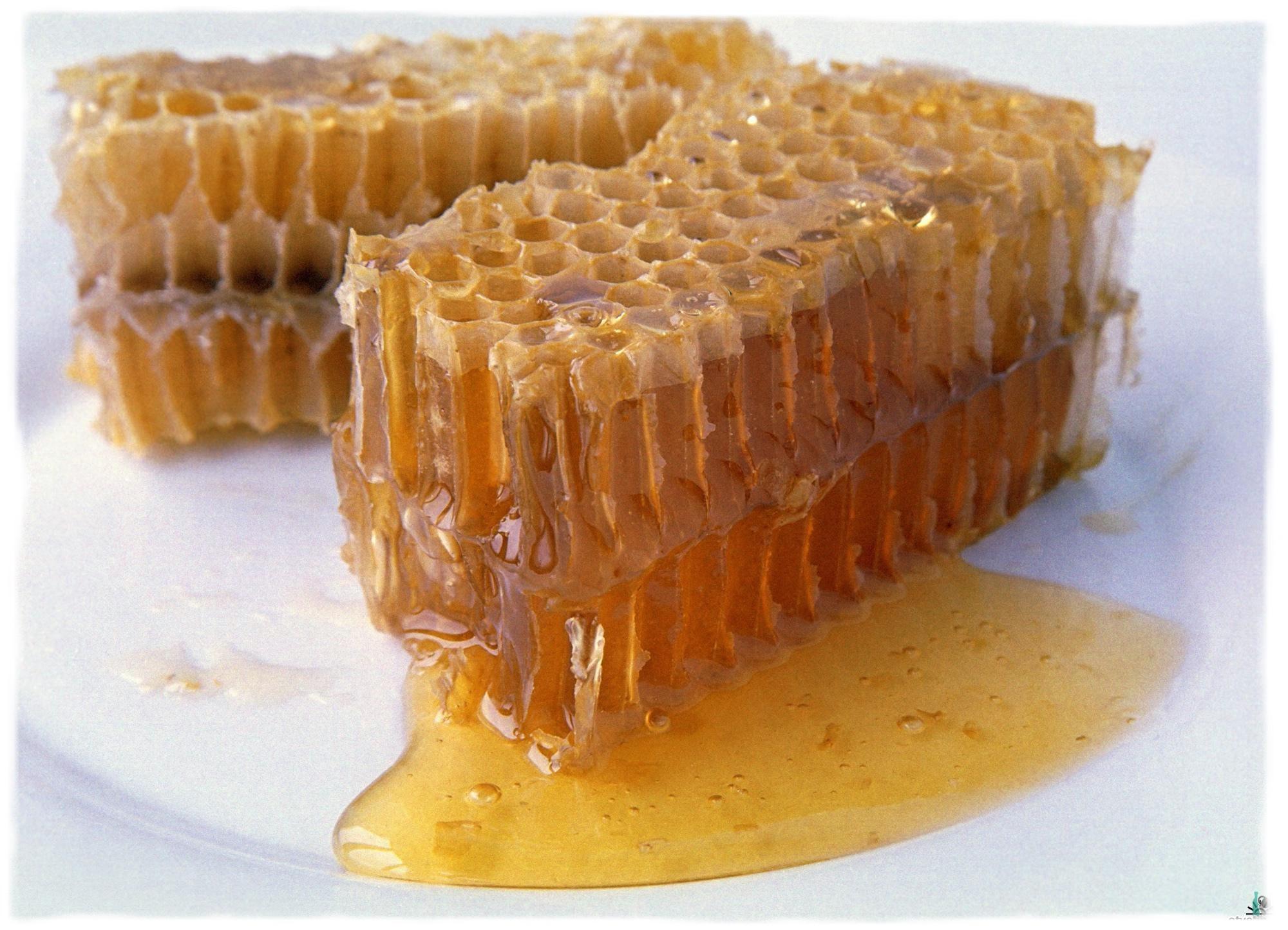 Мед при похмелье: свойства продукта и полезные рецепты