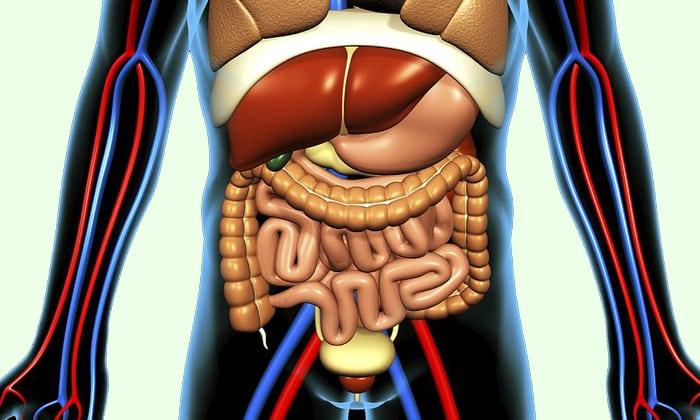 Действие препарата защита печени и других органов от накопления в них алкоголя и его токсичного продукта переработки – ацетальдегида
