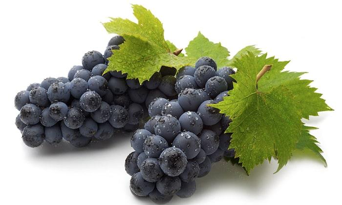 Виноград – имеет в своем составе полифенольные соединения и флавоноиды, которые являются сильнейшими антиоксидантами