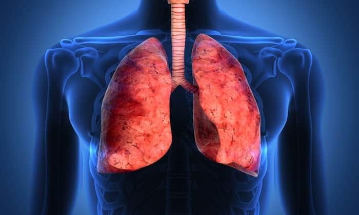 Флемоклав солютаб применяется для лечения Пневмонии и хронических обструктивных болезней легких