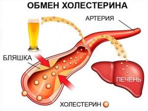 На уровень холестерина 4 как алкоголь
