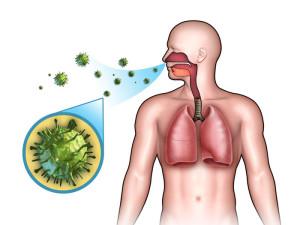 Флемоклав солютаб применяется для лечения пневмонии, хронической обструктивной болезни легких, обострений хронического бронхита