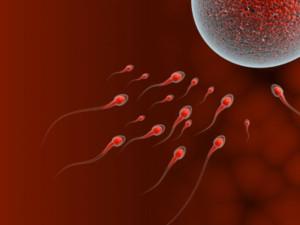 К чему может привести пьяное зачатие?