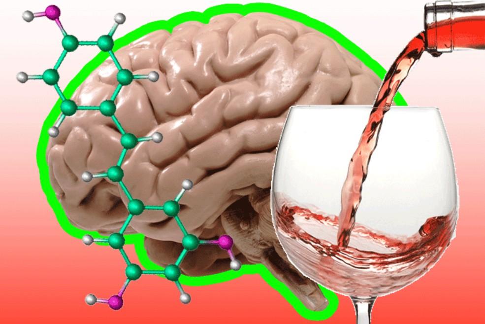 video-podsmotrennoe-v-ginekologii