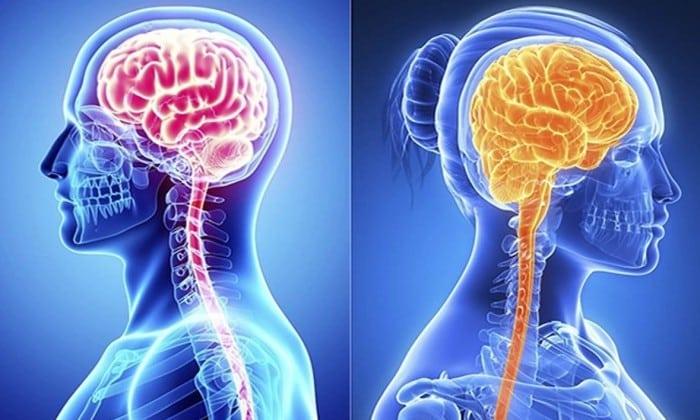 Алкоголь в спинном мозге держится гораздо дольше и способен повлиять на скорость реакции и концентрацию внимания после того, как промилле придут в норму