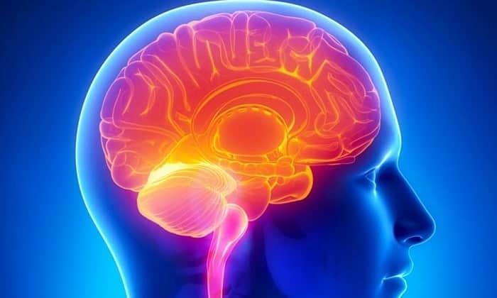 Лекарство повышает активность головного мозга