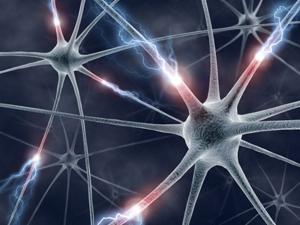 Отрицательное влияние алкоголя на нервную систему