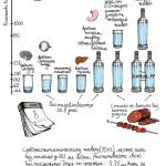 Схема контролирования употребления алкоголя