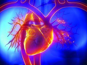 Болезни сердца - причина боли в боку