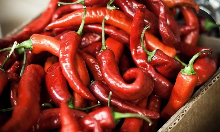 При лечении хронического алкоголизма можно использовать настойку красного перца