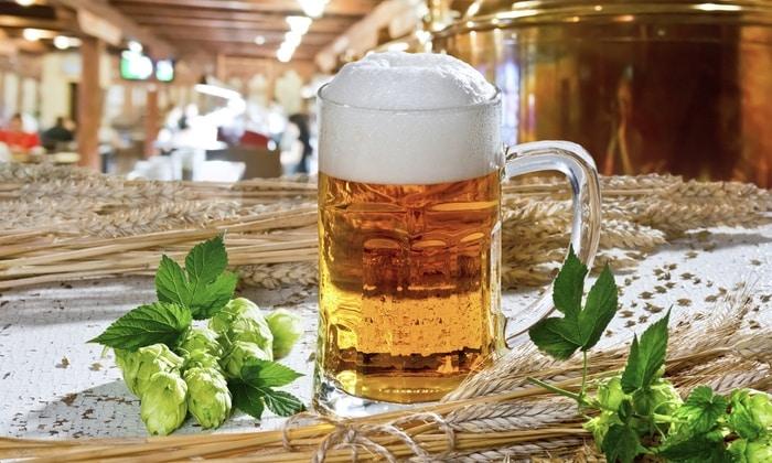 Несмотря на то, что пиво относится к слабоалкогольным напиткам, медики не рекомендуют пить его ежедневно.