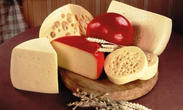 Янтарная кислота содержится в сыре