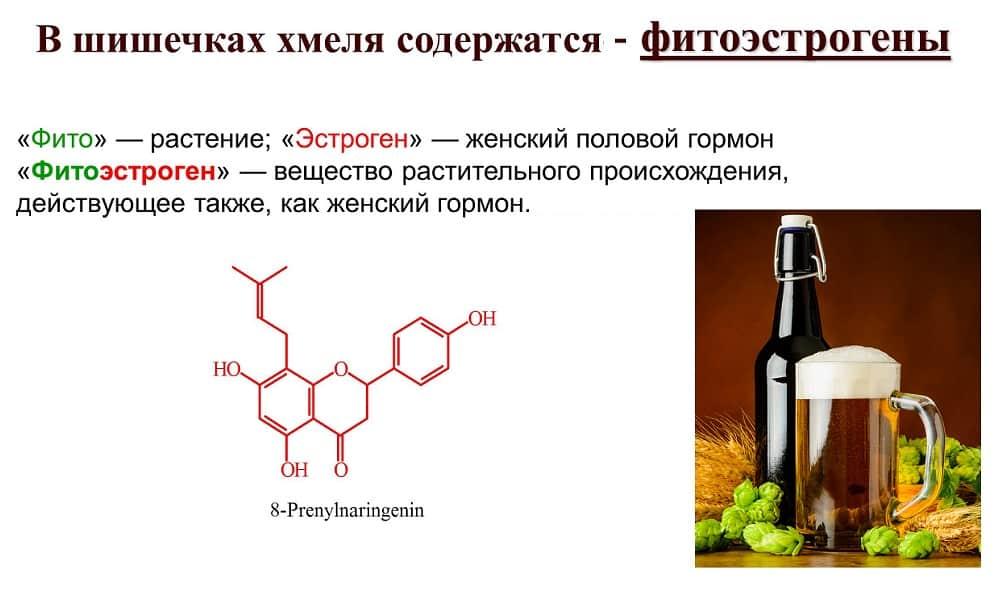 Пиво содержит такой женский гормон, как фитоэстроген. Он нарушает гормональный баланс в организме мужчины, способствует уменьшению синтеза протеина и снижению уровня гормона тестостерона