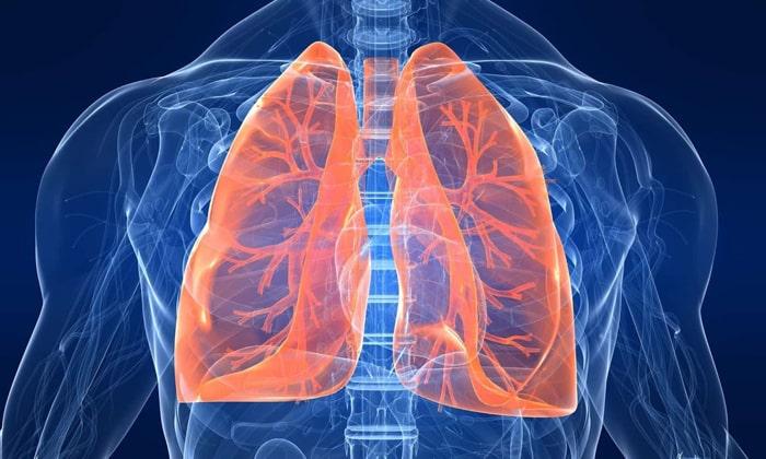 Янтарная кислота помогает при заболеваниях легких