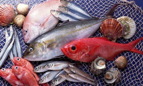 Большое количество полезных для организма веществ содержится в морепродуктах, поэтому можно включать их в рацион