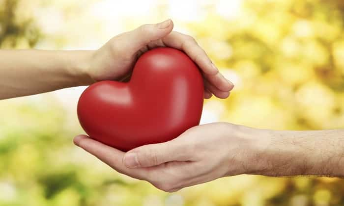 Сердце нуждается в регулярной поставке витамина В1