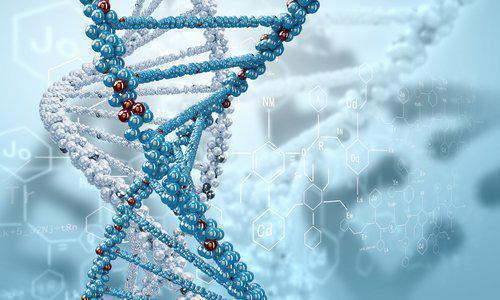 Нитрогруппа взаимодействует с клеточной ДНК микробов, затормаживая синтез нуклеиновых кислот