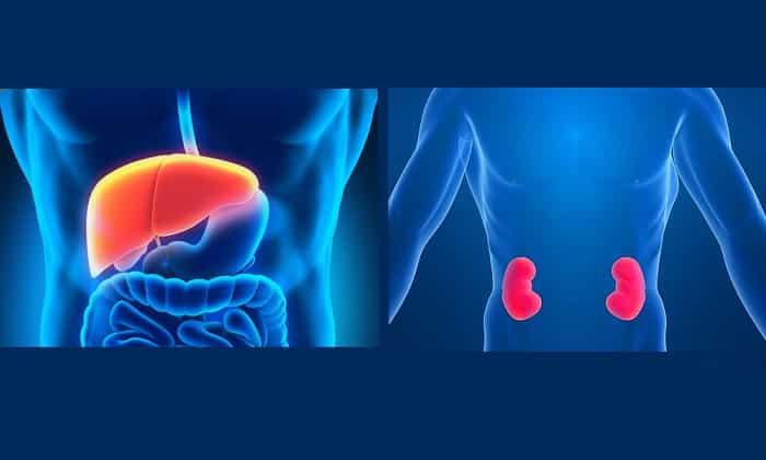Прием препарата противопоказан при тяжелых заболеваниях почек и печени