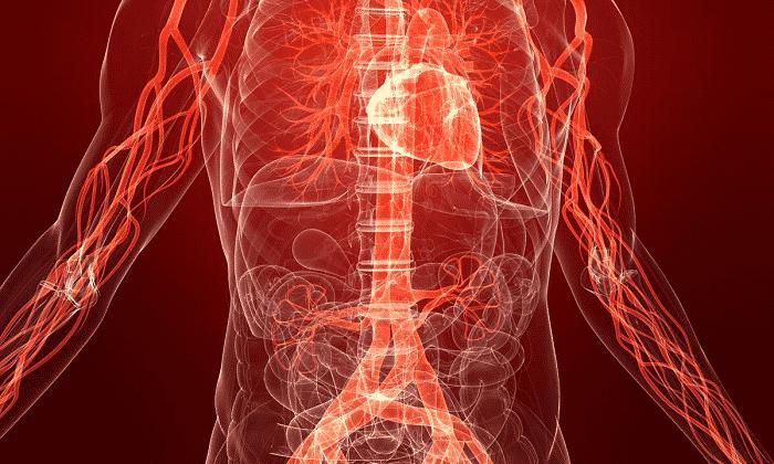 Дринкофф нельзя принимать при патологиях сердечно-сосудистой системы