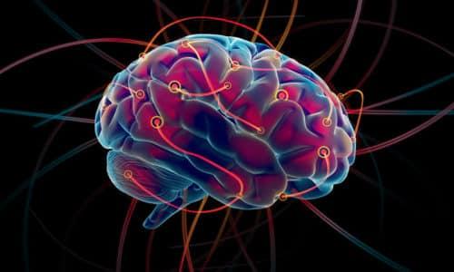 Когнитивное влияние, оказываемое Пикамилоном, можно в большей степени приписать улучшению циркуляции крови в мозге и увеличению абсорбции кислорода