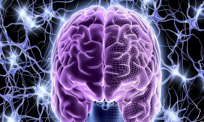 Пикамилон защищает клетки мозга от вымирания из-за избыточной активности