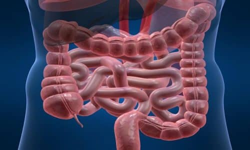 После попадания в желудочно-кишечный тракт вещество хорошо усваивается и распределяется по всем тканевым структурам организма