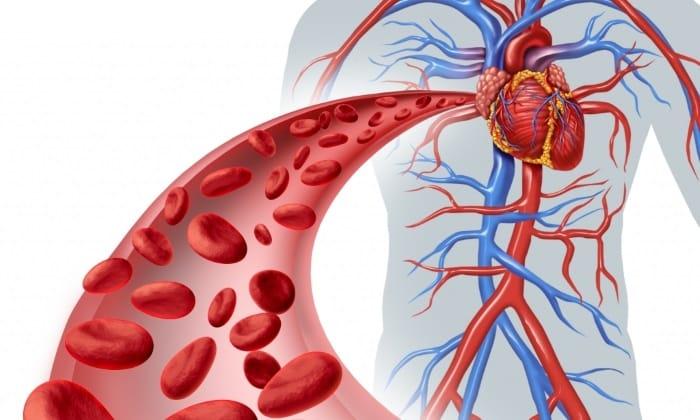 Медикамент оказывает положительное влияние на работу кровеносной системы, его эффективность давно доказана