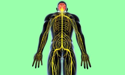 Лекарство относится к средствам, влияющим на нервную систему