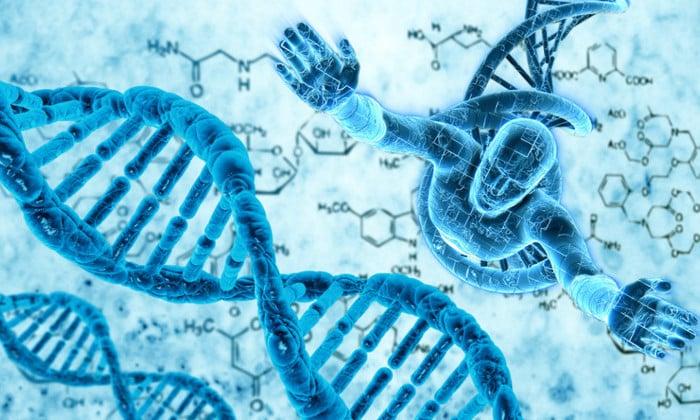 У взрослых людей гиповитаминоз развивается вследствие генетической предрасположенности