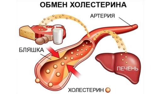 Лекарство способствует выведению холестерина из организма