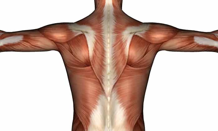 При передозировке наблюдается мышечная слабость