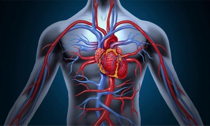 Микристин применяется при заболеваниях сердечно-сосудистой системы