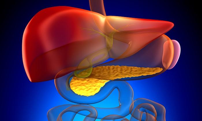 Специалисты рекомендуют регулярно проходить очищающий курс при патологиях печени