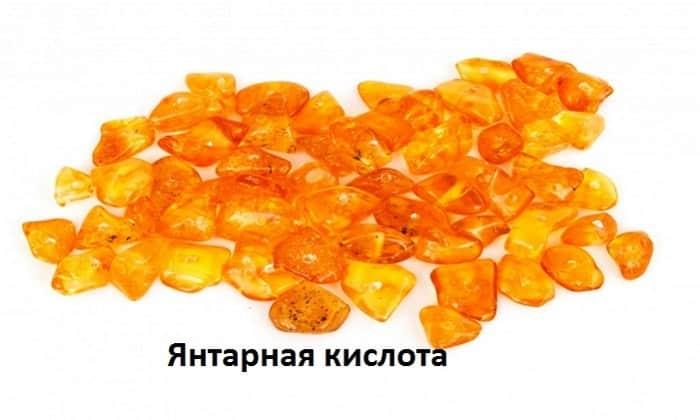 В состав Антипохмелина входит янтарная кислота