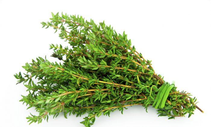 Взять 125 г мелко нарезанных листьев розмарина, залить 500 г горячей воды и поставить на огонь. Спустя 10 минут отвар убрать с плиты и процедить. Такое народное средство нужно употреблять ежедневно 10 раз в сутки по 50 г