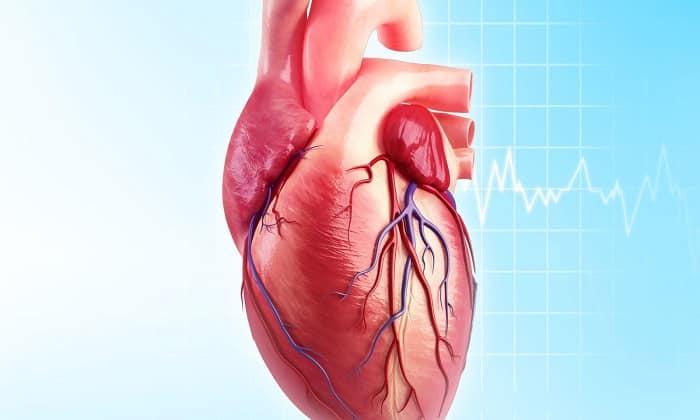 В числе показаний Пирацетама ишемическая болезнь сердца у людей пожилого возраста