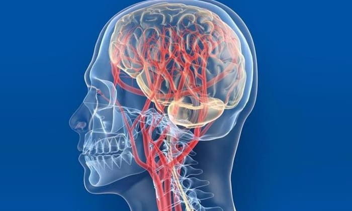Препарат показан при нарушениях кровообращения головного мозга