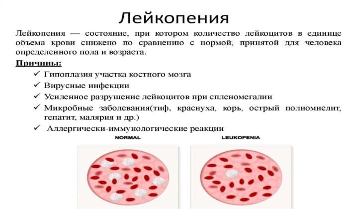 Препарат противопоказан при лейкопении